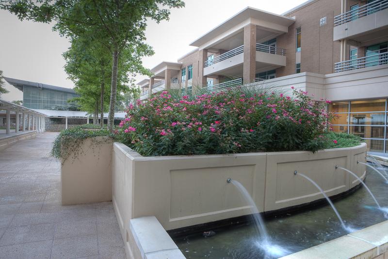 A relaxing fountain in the Lenbrook gardens.